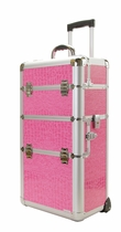 Pink Pro Makeup Train Case