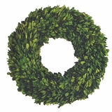 "English Boxwood 16"" Wreath"