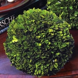 English Boxwood Ball