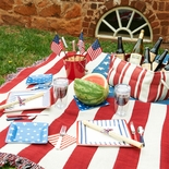 Fourth of July Picnic Set for Two