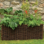 Natural Willow Veggie Planter