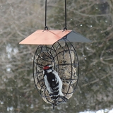 Suet and Seed Ball Feeder