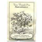 Tom Thumb Pea Seeds (<i>Pisum sativum</i> cv.)
