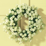 White Hops Wreath