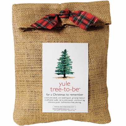 Yule Tree to Be