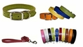 Faux Crocodile Dog Collars & Leashes