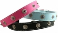 Leather and Crystals Dog Collars 1 inch wide