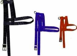 Nylon H Style Dog Harness 1 inch Wide