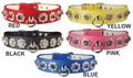 Starburst Vinyl Dog Collars