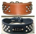 Leather Dog Collar with Studs with Name Plate