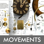 Movement Type