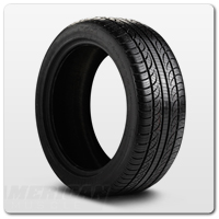10-14 All Season Ford Mustang Tires