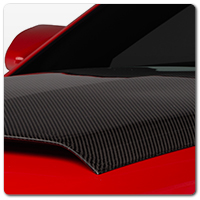 10-14 Mustang Carbon Fiber Dress Up