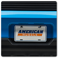 10-14 Mustang License Plates & License Plate Frames