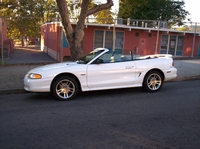 1996 White Mustang GT Convertible - Leo '96