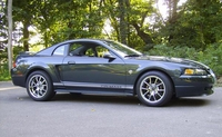 1999 Green Pearl Mustang GT - Lance Flathers '99