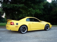 1999 Yellow Mustang GT (35th Anniversary) - Chris Hotz '99