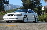2000 Pearl White Ford Mustang GT Pictures - Matthew Smith '00