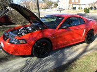 2000 Performance Red Mustang GT - Kevin Maschue '00