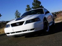 2000 White Ford Mustang 3.8L Pictures - Camaron '00