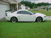2001 Cool White Mustang GT Pictures- Scott Beckham '01