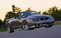 2001 Mineral Gray Saleen Mustang GT Convertible - Jas Singh '01