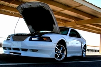 2001 Oxford White Mustang V6 - Justin Smith '01