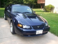 2001 True Blue Mustang GT Pictures - Chester Martin '01