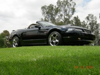 2002 Black Supercharged Mustang GT Convertible - David Nieto '02