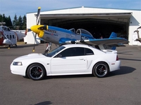 2003 Clear Water White Mustang GT Pictures- Sara Sayers '03