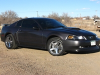 2003 Dark Charcoal Gray Mustang GT - Addison Mueller '03