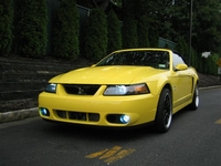 2003 Mellow Yellow Convertible Cobra