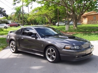 2003 Mineral Grey Ford Mustang GT Pictures - Miguel Dulanto '03