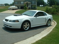 2004 Alabaster White Mustang Gt Pictures- Steven McCleskey '04