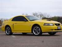 2004 Banana Yellow Mustang Pictures- Erik Williams '04