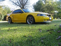 2004 Big Yellow Mustang GT Pictures- Kasey Murphy '04