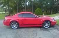2004 Crimson Red Mach 1 40th Anniversary Edition - Justis Smith '04