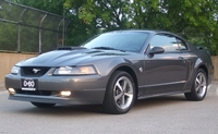 2004 Dark Shadow Gray Mach 1 - Conner Walsh '04