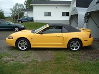 2004 Screaming Yellow Mustang GT - Todd Faulkner '04