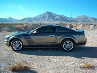 2005 Minreal Gray V6 4.0 Mustang Pictures- Barry Naft '05
