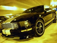 2007 Black and Silver Mustang Shelby GT - Matt Browder '07