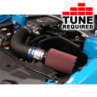 C&L Cold Air Intake w/ 95mm MAF (10 GT)