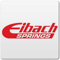 Eibach Mustang Shocks and Struts