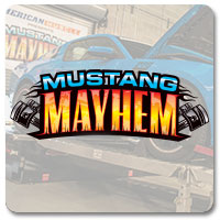 Mustang Mayhem 2014 - GT500 vs. Coyote