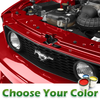 Radiator Center and Extension Cover Kit - Pre-painted (05-09 GT, V6)