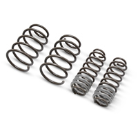 Roush Extreme Lowering Spring Kit (05-12 GT)