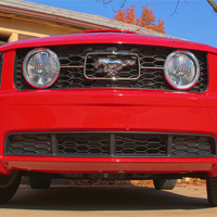 SHR GT Lower Grille Inserts (05-09 GT)