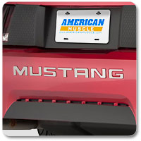Stainless Steel Mustang Bumper Inserts