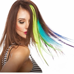 """18"""" Long Synthetic Clip-In Hi-Lights"""