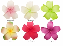 "2.5"" Classic Hawaiian Flower Hair Clip (available in 6 vibrant colors)"